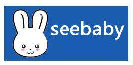 Xe đẩy Seebaby T04